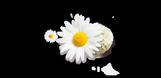 Masque Crème Relaxant