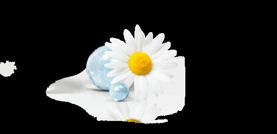 Crème Blanche pour les Mains & O